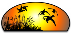 Ducks Dawn color decal