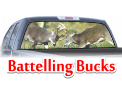 Battin Bucks View Thru Window Graphic