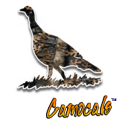 Camocals Turkey 1