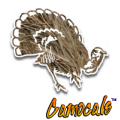 Camocals Turkey 2