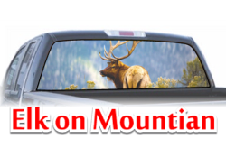 Elk on Mountian View Thru Window Graphic
