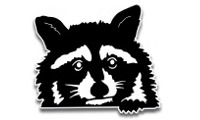 Coon Face Decal